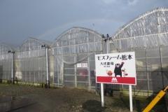 101-1モスファーム熊本八代農場